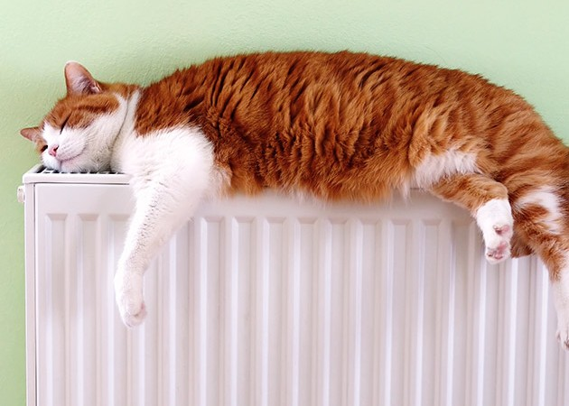 Einfach warm.